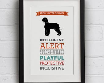 Irish Water Spaniel Dog Breed Traits Print