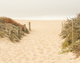 Beach Path Photo, Beach Fence, Beach Decor, Coastal Nautical Decor, Ocean, Seascape, Soothing, Large Wall Art, Beige Grey White,Home Decor,