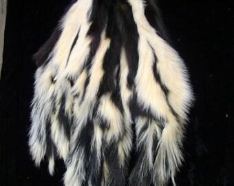 Taxidermy Beautiful Tanned WHITE STRIPED SKUNK Fur Skin Pelt Log Cabin Decor 5082