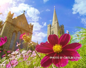 Digital Download, Flowers outside St. Patrick's Cathedral in Dublin, Wall Art