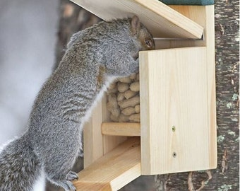 Jack in the Box Squirrel Feeder