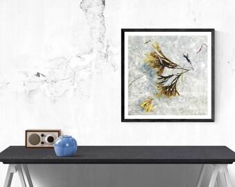 ocean photography // abstract art print // nature art // minimalist modern abstract  // Seaweed I, fine art photograph