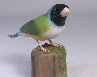 Gouldian Finch (white-breast) Hand Carved Wooden Bird