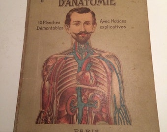 Anatomical Flapbook (1900) Le corp humain. Anatomie de l'homme