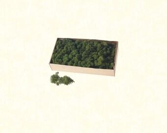Green Moss, 1.1 lbs