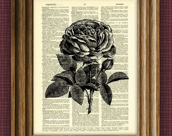 ROSE flower awesome upcycled vintage dictionary page book art print