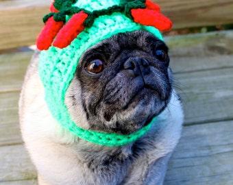 Happy Cinco De Mayo Dog Hat / Made to Order