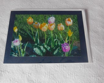 Spring  Flowers blank Cards