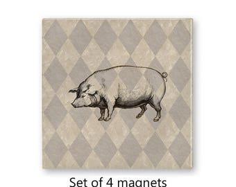 Pig magnet set, hog fridge magnets, vintage style, rustic refrigerator magnets, set of 4 decorative magnets, kitchen decor,  tan