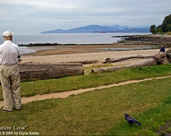 The PATIENT CROW, Vancouver BC, English Bay, Clyde Keller photo