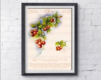 Stampe per cucina, Quadri cucina, Stampe con frutta, Quadri stampe, Stampe Botaniche, Stampe Murali, Poster frutta, Stampe digitali