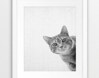 Cat Print, Grey Cat Print, Black And White Print, Nursery Decor, Cat Photography, Texture Print, Wall Home Kids Room Decor, DIY digital art