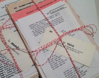 50 Dictionary Pages / Foreign Language Dictionary Pages Vintage Ephemera for Collage, Altered Art