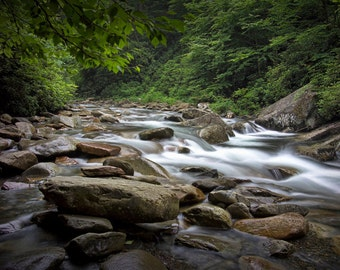 Mountain Stream in the Great Smoky Mountain National Park in Tennessee No.559 - A River Wilderness Landscape Photograph