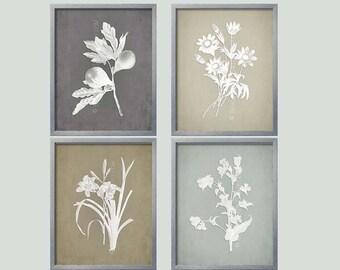 Gray Botanical, French Country Wall Art,  Botanical Collection, Gray Prints, Grey Wall Art, Farmhouse Style Decor, Rustic Farmhouse Art