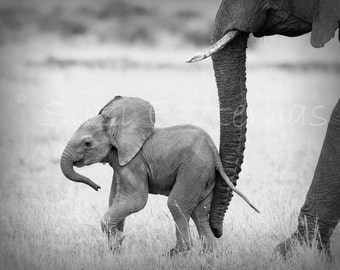 50% OFF SALE,  Baby Elephant  Black and White Photo Print, Baby Animal Nursery Decor, Animal Nursery Wall Art, Safari Animal Wall Art