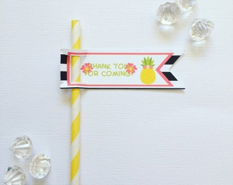 Tropical pencil/straw flags