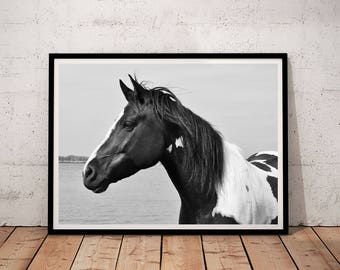 horse print, horse prints wall art, horse print black and white, horse printable, horse photography, printable wall art, downloadable prints