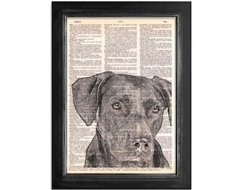 Black Lab Dog Art Print - Printed on Vintage Dictionary Paper - 8x10.5
