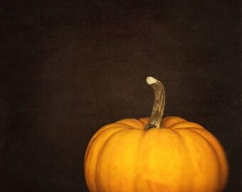 Orange Pumpkin, Thanksgiving Decor, Nature Wall Print, Photography, kitchen artwork, cafe decor, dining room art, holiday decor, minimalist