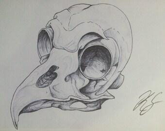 Bird Skull Art Print A5