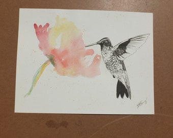 Humming bird at Flower, Original Watercolor by Liz Pope