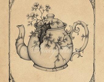Green Tea - Fine Art Illustration - Print