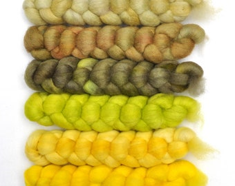 Hand dyed roving -  Blue Faced Leicester (BFL) wool spinning fiber - 6.0 ounces - Lemon Curd