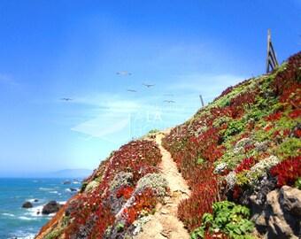 Bodega Bay - original fine art photography gallery wrapped canvas print