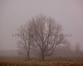 Landscape Photography, Country Photography, Fog Photo, Country Print, Home Decor, Wall Art,