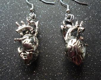 Anatomical Heart earrings ~  Horror jewelry ~  Macabre earrings ~ Anatomy jewelry