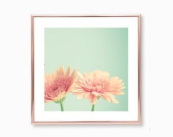 Large wall art, framed wall art, flower photography, wall art canvas, canvas art, blush pink wall art, coral wall art, pink wall art, floral