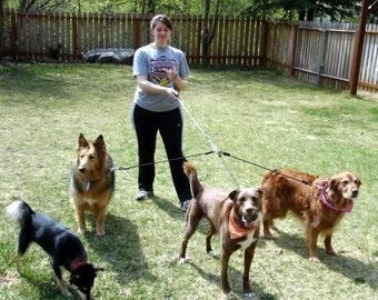 3 Dog Leash - Multiple Dog Leash - Rope Dog Leash - Triple Leash Set - 6mm Turquoise & Navy Climbing Cord - Three Dog Leash - READY TO SHIP