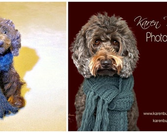 Felted Miniature Needle Felted Dog /  Custom Pet Portrait / Made Just for You / example Labradoodle