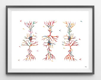 Pyramidal Neurons Watercolor Print Pyramidal cells dendritic structure poster brain cells watercolor print Science Art Neurology poster