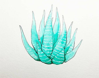 """Succulent 3 Ink and Watercolor Illustration 6"""" x 6"""""""