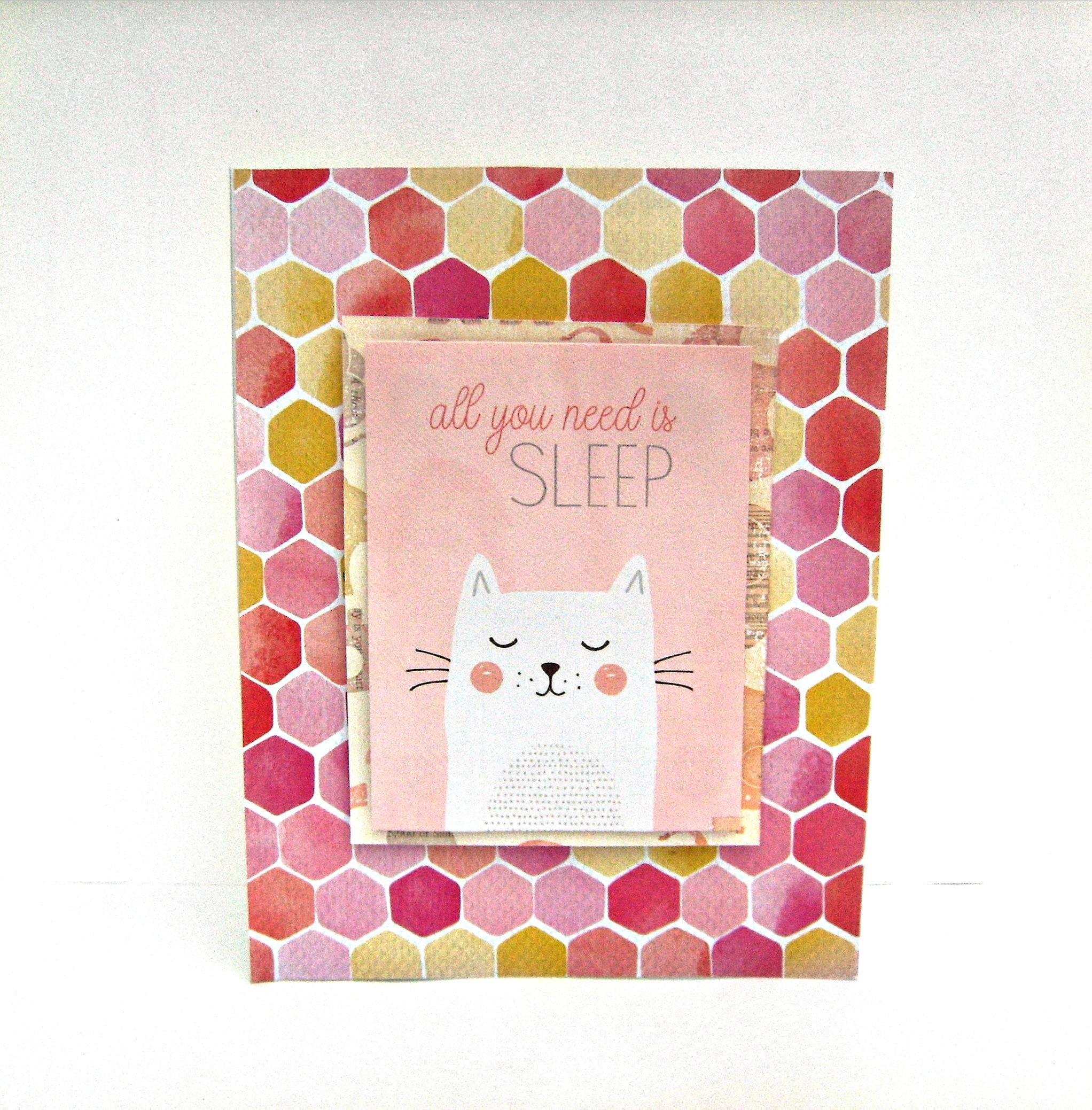 Cat Card Friendship Cards All Occasions Card Funny Greeting