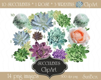 Succulent Clipart Set of succulents, wreaths and a pastel pink rose for creating wedding invitations