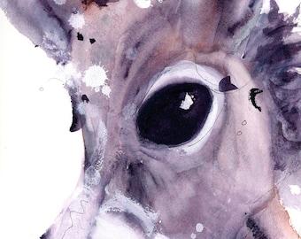 Donkey Print, 12 x 16 Donkey Art