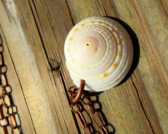 Common Sundial Necklace // Beach Shell Jewelry // Copper and Shell Necklace // Simple Seashell Necklace //
