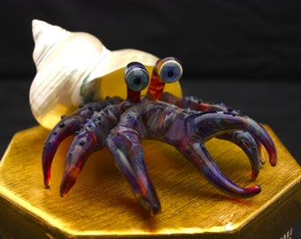 glass hermit crab with natural shell