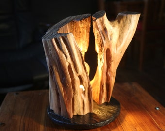Lamp made in a plum tree trunk, 100% handmade