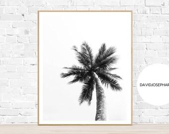 Palm Print, Modern Print, Black and White, Botanical Print, Beach Print, Plant Print, Palm Wall Art, Palm Decor, Palm Trees, Palm Leaf Print