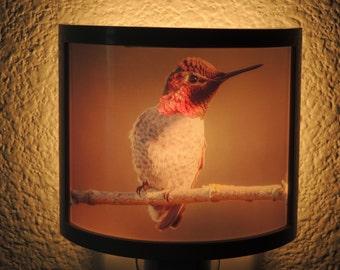 Annas Hummingbird Night Light - Cottage Decor - Cute Gift idea!