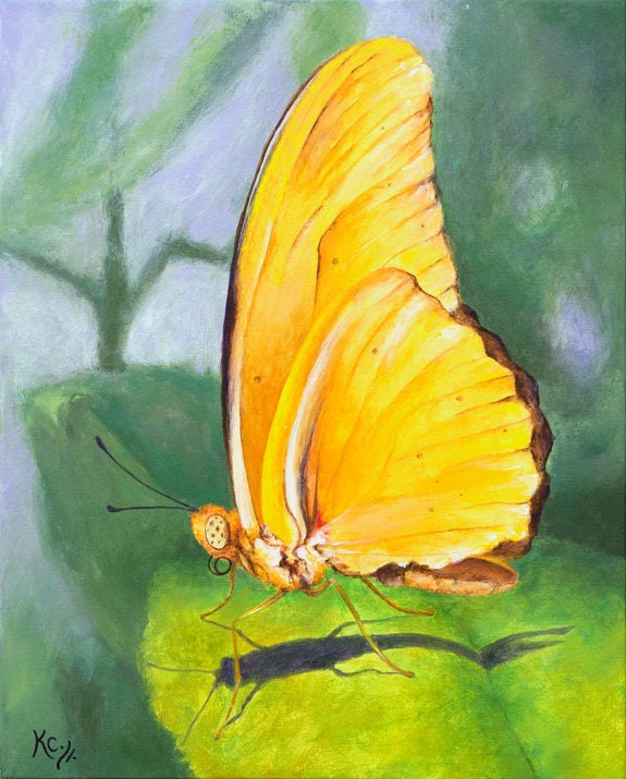 Realistic butterfly paintings - photo#53