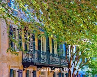 Quintessential Charleston - Photographic Print