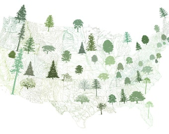STATE TREEscape Map Drawing (Art Print) American USA State Trees Earth Day Arbor Day Print Home Decor Tree Hugger Arborist Forest Gift