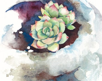 Succulent print, Succulent watercolor, Succulent art, Botanical print - giclee print of an original watercolor (5 x 7 in)