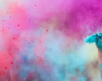 Gender Reveal loose holicolor canister for gender reveal- gender reveal powder- gender reveal chalk