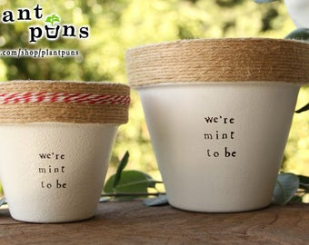 """6"""" We're Mint to Be » Mint Herb Indoor and Outdoor Pot or Planter"""